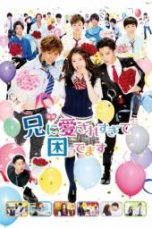 Nonton My Brother Loves Me Too Much Subtitle Indonesia - Dutafilm INDOXXI